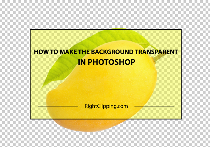 How to Make the Background Transparent in Photoshop: A Beginners Guide